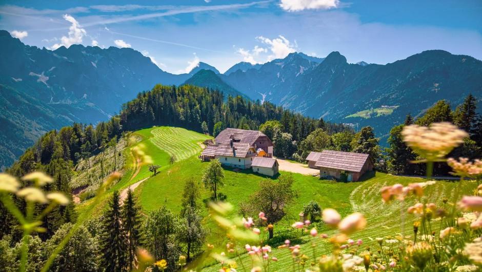 2,5 milijona evrov za prilagoditev slovenskih kmetij na podnebne spremembe (foto: profimedia)