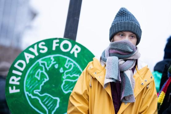Greta Thunberg tudi na 17. rojstni dan pred švedskim parlamentom
