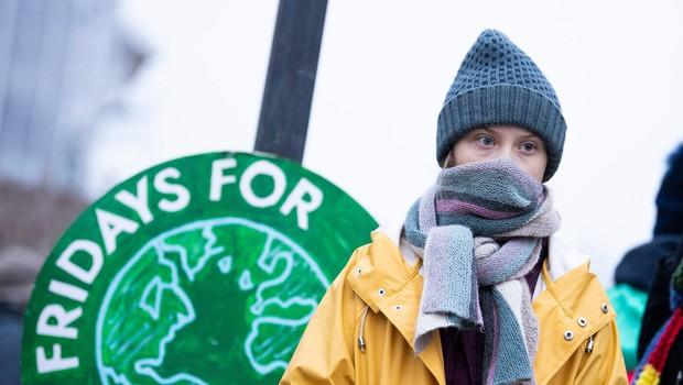 Greta Thunberg tudi na 17. rojstni dan pred švedskim parlamentom (foto: profimedia)