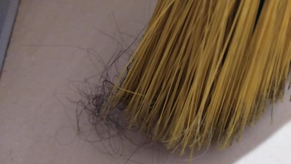 Umazana metla in na njej ujeti lasje. (foto: osebni arhiv)