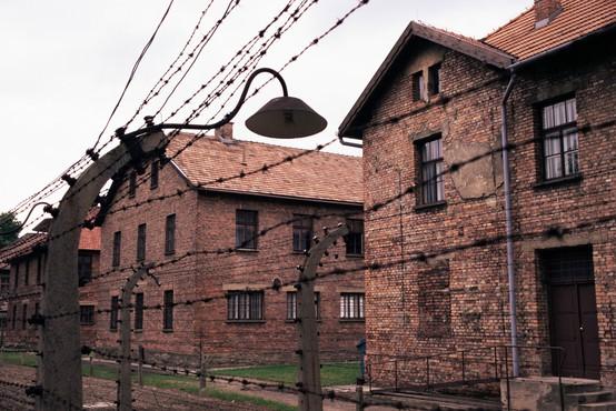 75. obletnica osvoboditve Auschwitza s slovestnostmi v Izraelu in na Poljskem