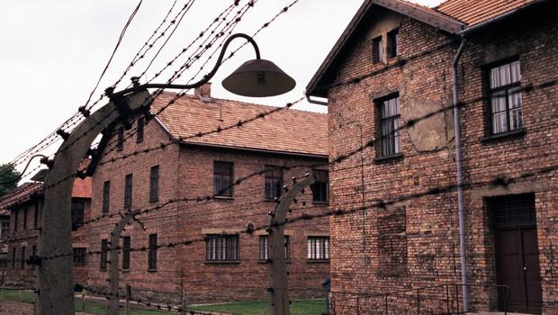 75. obletnica osvoboditve Auschwitza s slovestnostmi v Izraelu in na Poljskem (foto: profimedia)