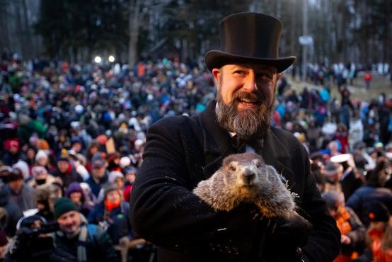 Slavni pensilvanski svizec Phil napovedal kratko zimo