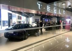 Tesla s pripravami za gradnjo tovarne, aktivista na drevesu nasprotujeta