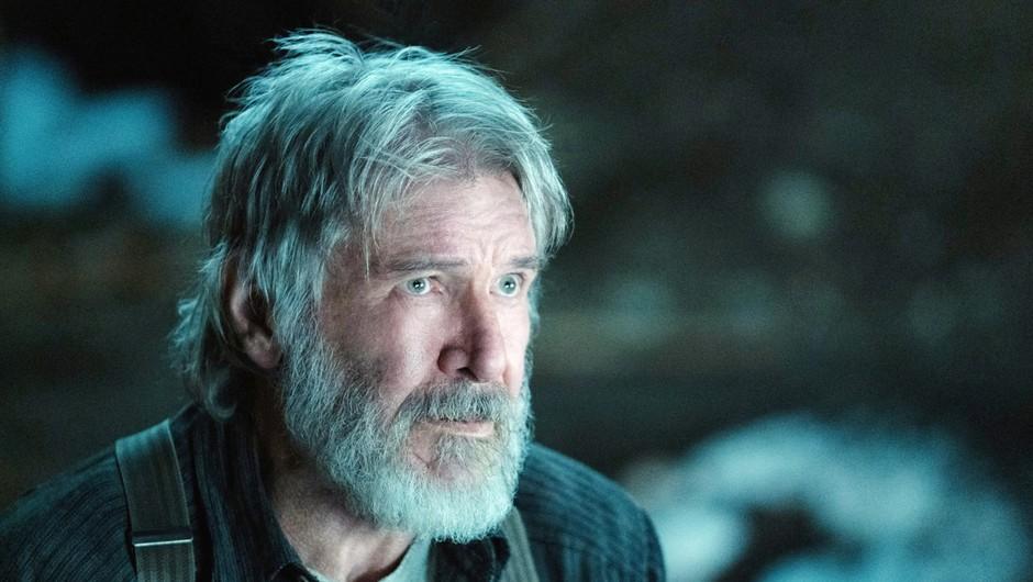 Večkrat preloženo premiero petega filma serije Indiana Jones naj bi dočakali julija 2021 (foto: profimedia)
