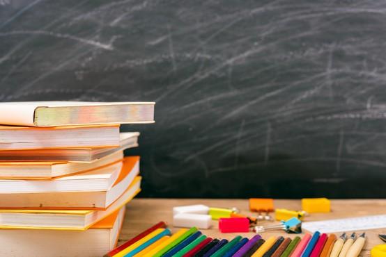 V več kot 20 državah po svetu zapirajo šole