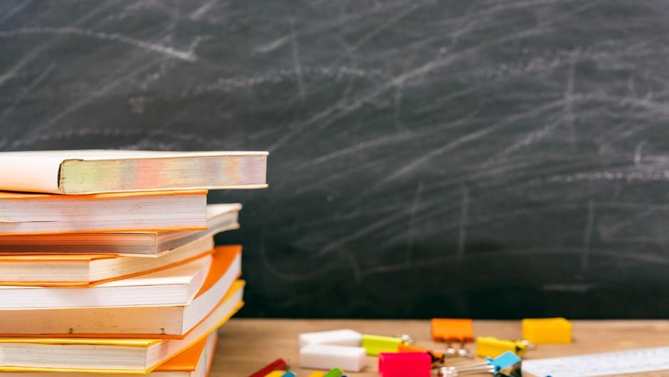 V več kot 20 državah po svetu zapirajo šole (foto: profimedia)