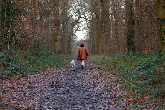 """Aleš Hojs: """"Na sprehod s psom da, s partnerjem, ki ne živi z nami, pa ne"""""""