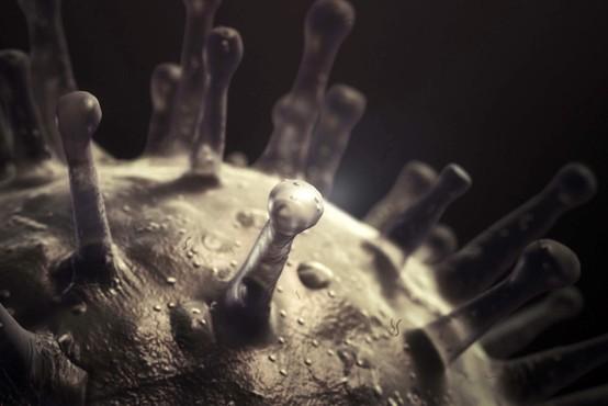 Discovery Channel bo ponovno predvajal dokumentarne serije z izobraževalnimi temami