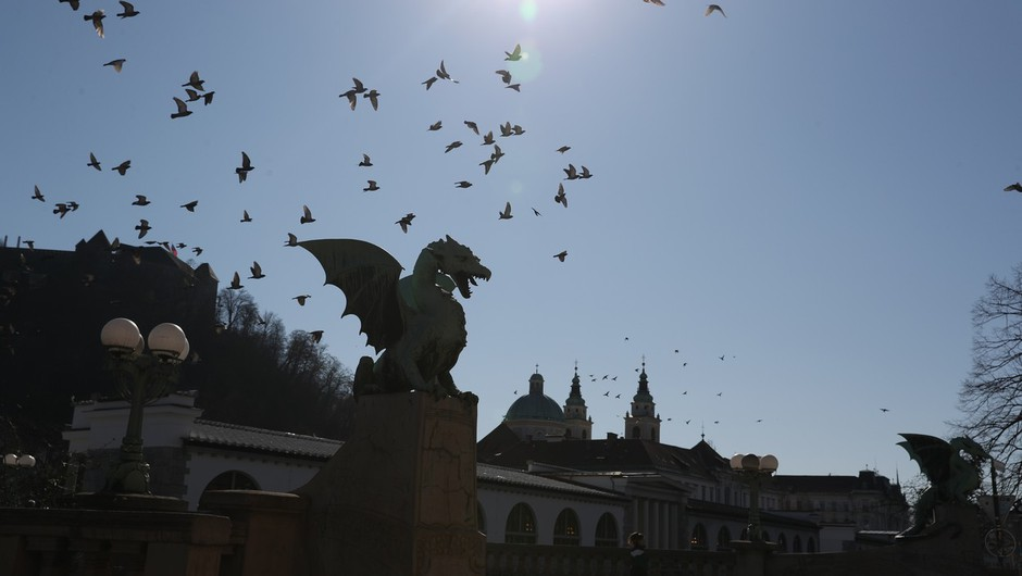 V Sloveniji od petka 42 dodatnih okužb, trgovci pozivajo k več strpnosti (foto: profimedia)