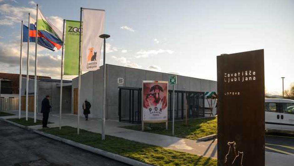 V ljubljanskem zavetišču bodo sprejemali živali obolelih za koronavirusom (foto: STA/Nebojša Tejić)