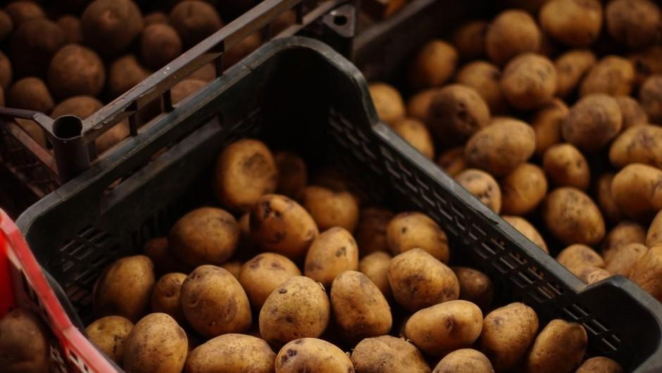 Potrošniki in pridelovalci hrane so se povezali na družbenem omrežju (foto: profimedia)