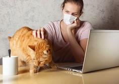 Prvi primer, ko je lastnik s koronavirusom okužil svojega mačka