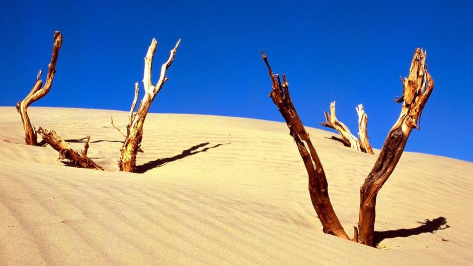 Zaradi puščavskega peska močno onesnažen zrak z delci PM 10 (foto: profimedia)