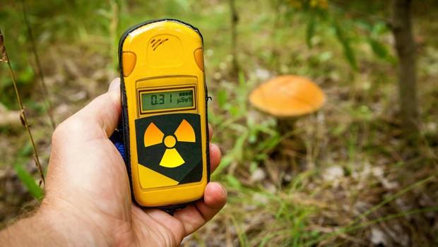 Gasilci nadaljujejo gašenje požara v Černobilu ob povišanem sevanju (foto: profimedia)