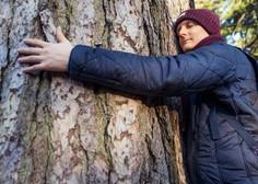 Islandski gozdarji priporočajo, da preženete osamljenost z objemanjem dreves