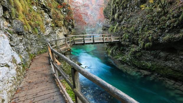 VIDEO: Sanjski kotički Slovenije, ki jih morate raziskati takoj, ko bo možno! (foto: profimedia)