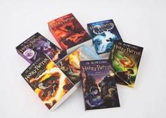 Knjige iz smetnjaka po 12 letih na podstrešju na dražbo