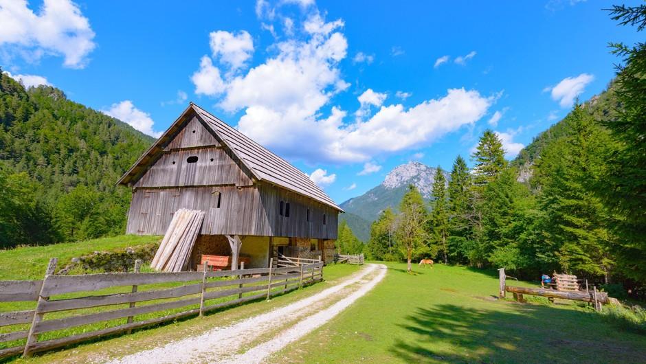 Planinska zveza Slovenije posodobila priporočila za vse dejavnosti v planinstvu (foto: Profimedia)