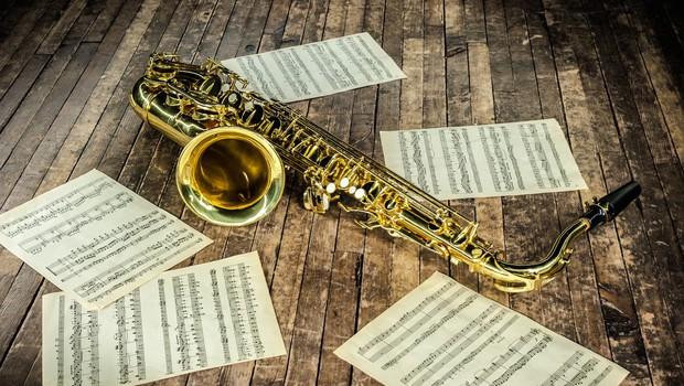 Omamljene laboratorijske podgane imajo raje jazz kot klasično glasbo (foto: profimedia)