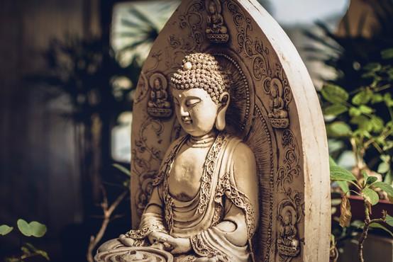 """9 misli Bude: """"Največja modrost je videti dlje in globlje od videza!"""""""