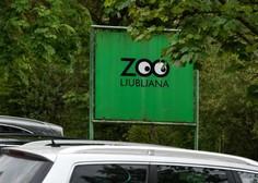 V ZOO Ljubljana ponovno odprta vivarij in otroški živalski vrt