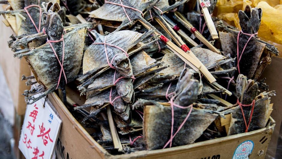 Posušeni netopirji, ki jih prodajajo na tržnici v Hong kongu (foto: profimedia)