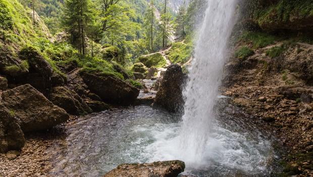 Na voljo brezplačen prevoz do muzejev in alpskih dolin (foto: Profimedia)