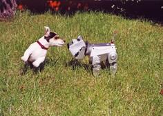 V tajski prestolnici robotski pes deli razkužilo za roke