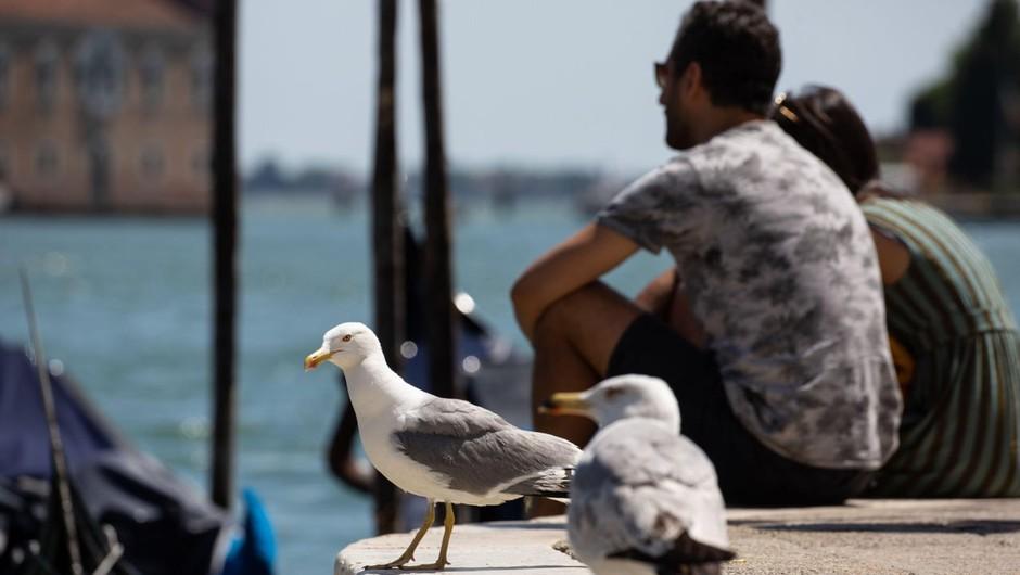 Po odprtju meja so v Italijo hitro prispeli prvi turisti (foto: profimedia)