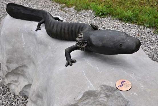 Belokranjska črna človeška ribica med najbolj ogroženimi vretenčarji v svetovnem merilu