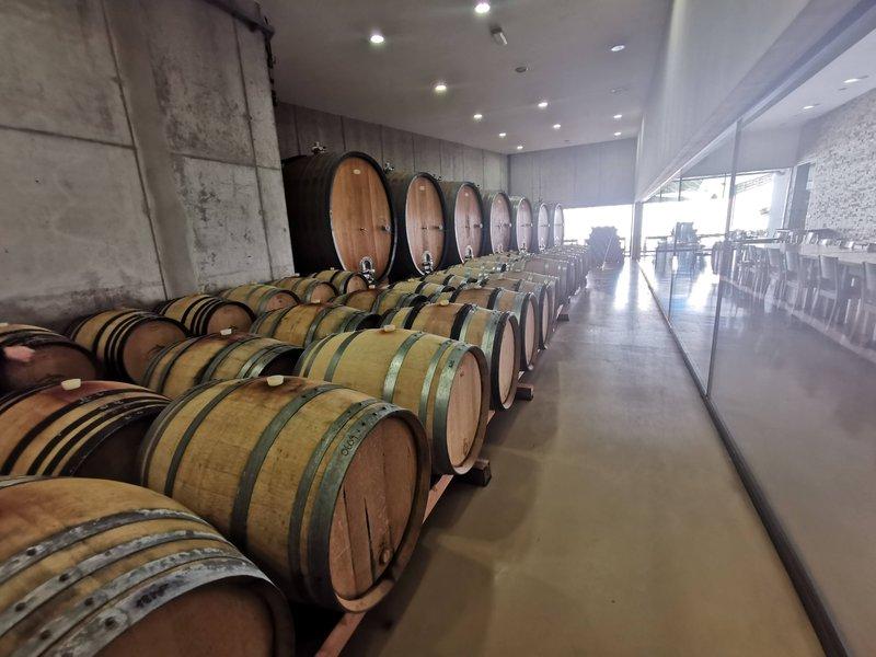 Vinska klet Zlati grič v vinorodnih Škalcah