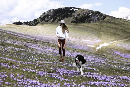 """""""Pot v gore nikakor ne sme biti nekaj nepremišljenega, varnost ni samoumevna"""""""