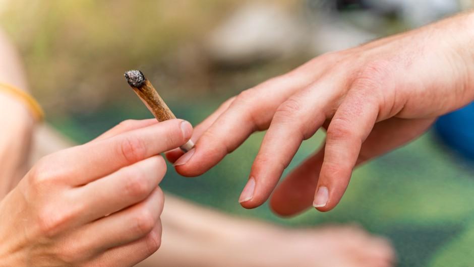 Slovenski 15-letniki po uporabi konoplje na samem vrhu (foto: Shutterstock)