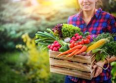 10 receptov veganske strokovnjakinje (za kakovostne zajtrke, kosila in večerje)