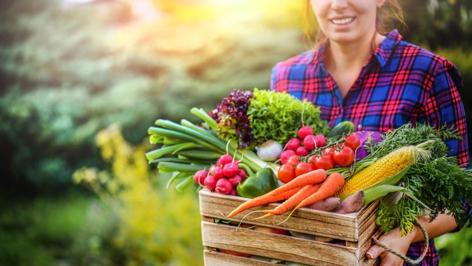 10 receptov veganske strokovnjakinje (za kakovostne zajtrke, kosila in večerje) (foto: Shutterstock)