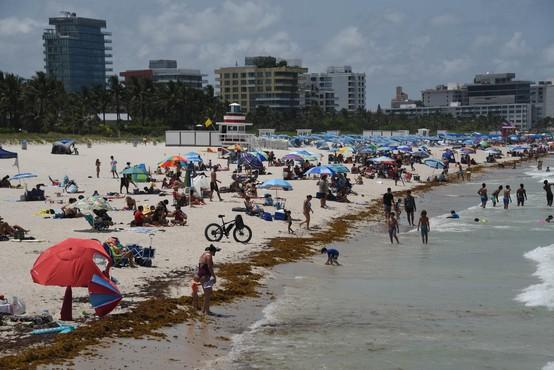 ZDA: okužba se širi predvsem po zahodu in jugu, nič bolje ni na Floridi