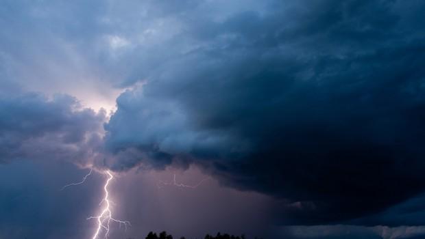 Na vzhodu države močan veter podiral drevesa in odkrival strehe (foto: Shutterstock)