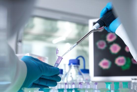 V Sloveniji so v torek ob 1399 testih potrdili 13 okužb