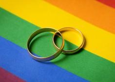 Črnogorski parlament potrdil zakon o istospolnih partnerstvih