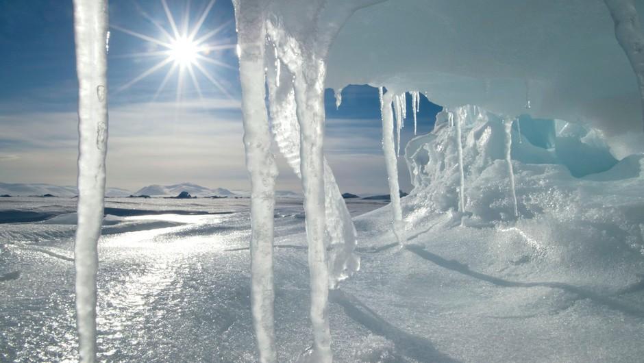 Znanstveniki se bojijo posledic taljenja arktičnega ledu (foto: profimedia)