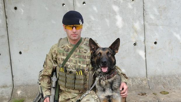 Službeni psi nemške vojske se učijo, kako zavohati okužbo z novim koronavirusom (foto: Profimedia)