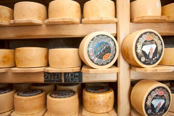 Med avtohtonimi izdelki s Paga bo poleg sira kmalu znana tudi konoplja