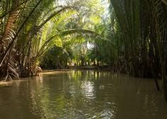 Znanstveniki odkrili nove živalske in rastlinske vrste v divjini ob reki Mekong