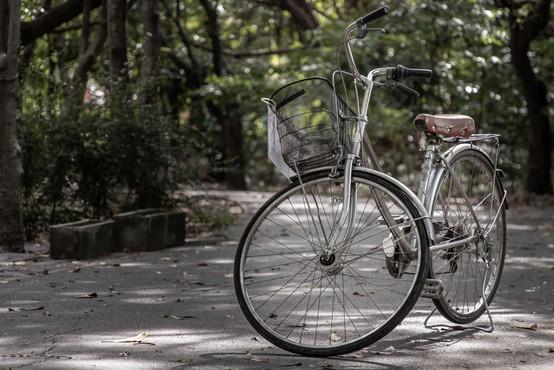 Na Gorenjskem so zagnali mrežo za izposojo koles Gorenjska.bike