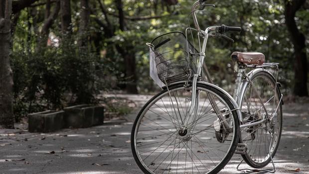 Na Gorenjskem so zagnali mrežo za izposojo koles Gorenjska.bike (foto: Profimedia)