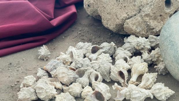 Tunizijec odkril, kako so nekoč izdelovali dragoceno kraljevo vijolično barvo (foto: profimedia)