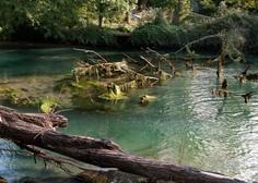 Vipava po desetletjih z dovolj čisto vodo, ki je primerna za kopanje