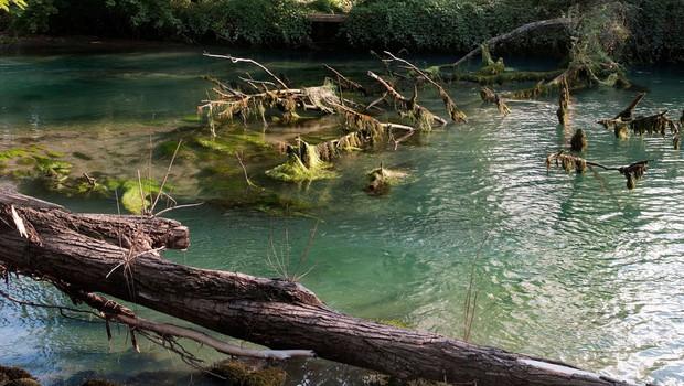 Vipava po desetletjih z dovolj čisto vodo, ki je primerna za kopanje (foto: profimedia)