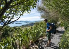 Nova Zelandija sto dni brez prenosa okužbe živi vsakdanje življenje